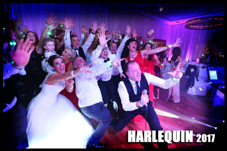 Wedding Band Ireland News - Harlequin fun