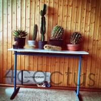 4cactus H59_Fotor_Fotor2