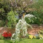 garden-Apr 03 - Copy
