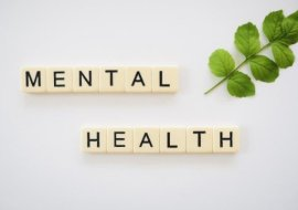 mental health harmony counselling