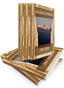 3D Book Stack Shamiana