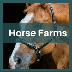 horse farms for sale north carolina