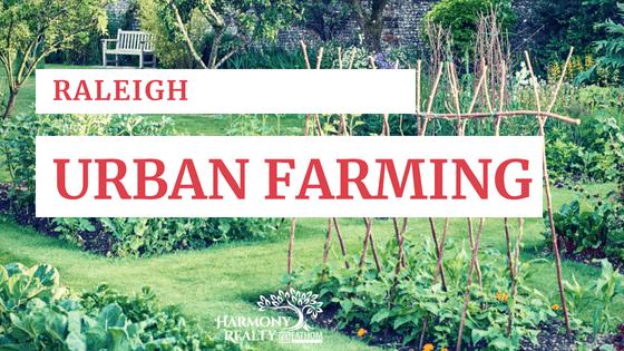 raleigh urban farming