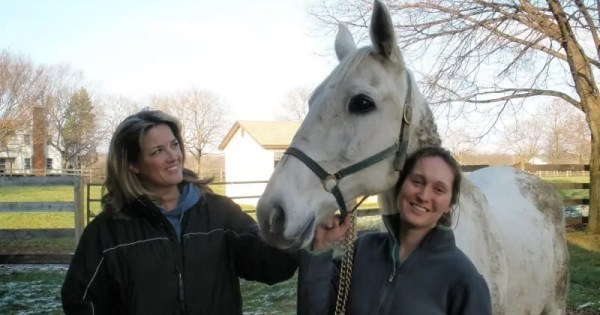 Dr. Patty Hogan (left), Keystone Wallis and the mare's savior Kate Miller. | Courtesy Dr. Patty Hogan