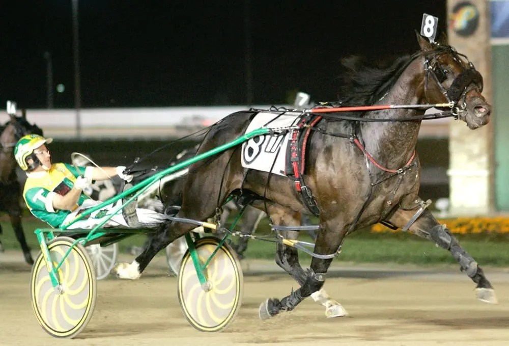 OUR LUCKY CHIP INVITE 10 12 Linscott Photography?fit=1000%2C679 the return of our lucky chip harness racing update Harness Trace Chains at reclaimingppi.co
