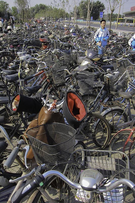 I see Bicycles EVERYWHERE