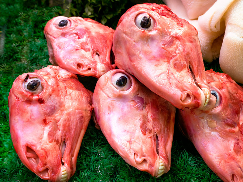 Goat Heads for Stew... Dow you eat the Eyeballs??