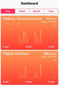 iPhone Walking Data for One Day