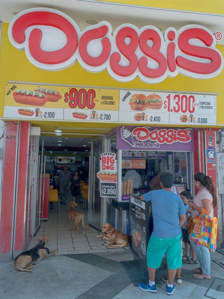 So that is how Doggis got their name