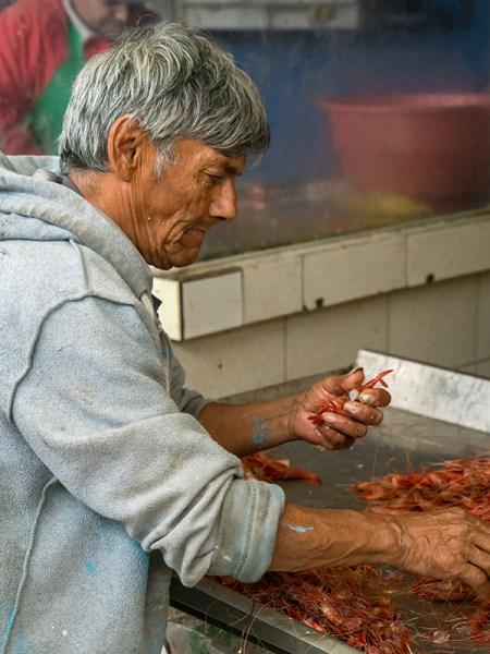 Sorting shrimp