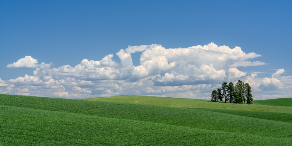 Tuscan Hills of the Palouse