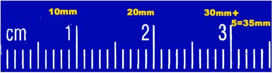 1:1 magnificationratio