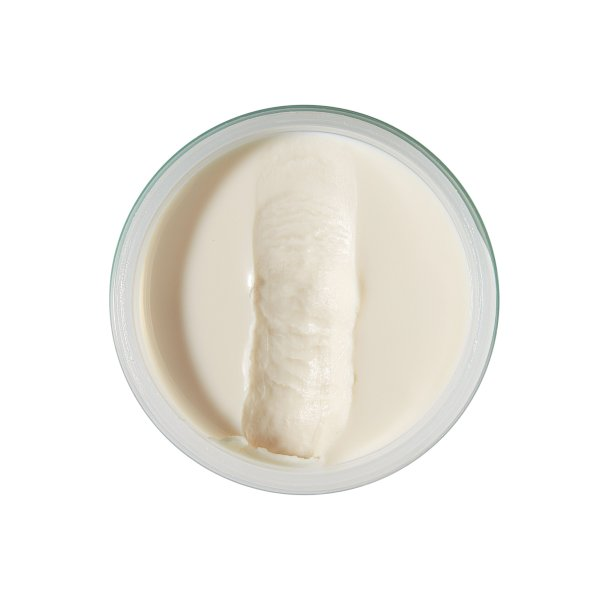 sponge wax