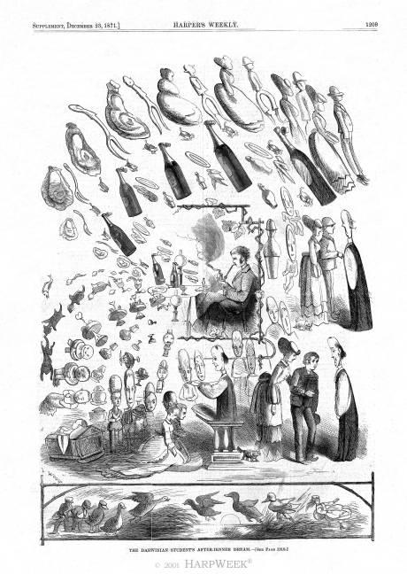 Darwinian student's dream, Harper's Weekly, December 23, 1871