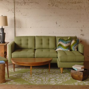green sofa on a green rug in a living room