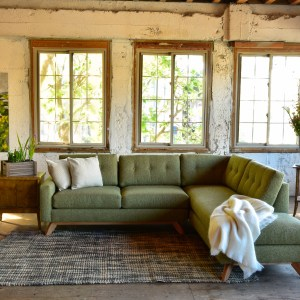Green sofa in living room with decor and plants