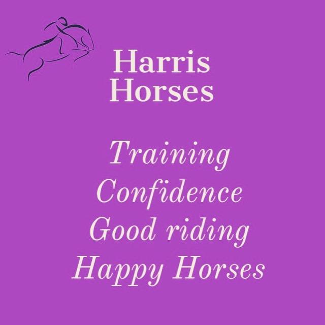 Harris Horses, Bordeaux, France