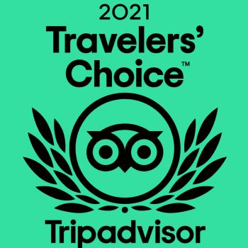20210528-ta-travelers-choice-award-green