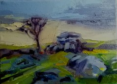 'Dartmoor balayé par le vent' part of 'This Green and Pleasant Land' series by M. Harrison-Priestman - oil on linen , 18 x 30 cm, 2020.