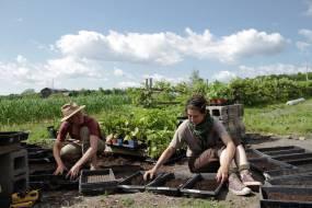 small farms 6
