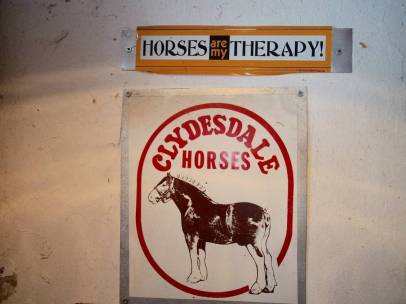 Horses are my Therapy 22