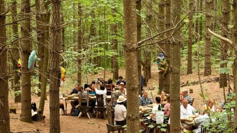 Feast in the Woods at Eigensinn Farm