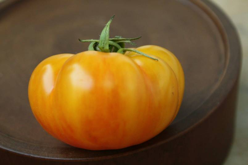 'Rumi Banjan' is small, flattened, and ribbed like a little pumpkin.