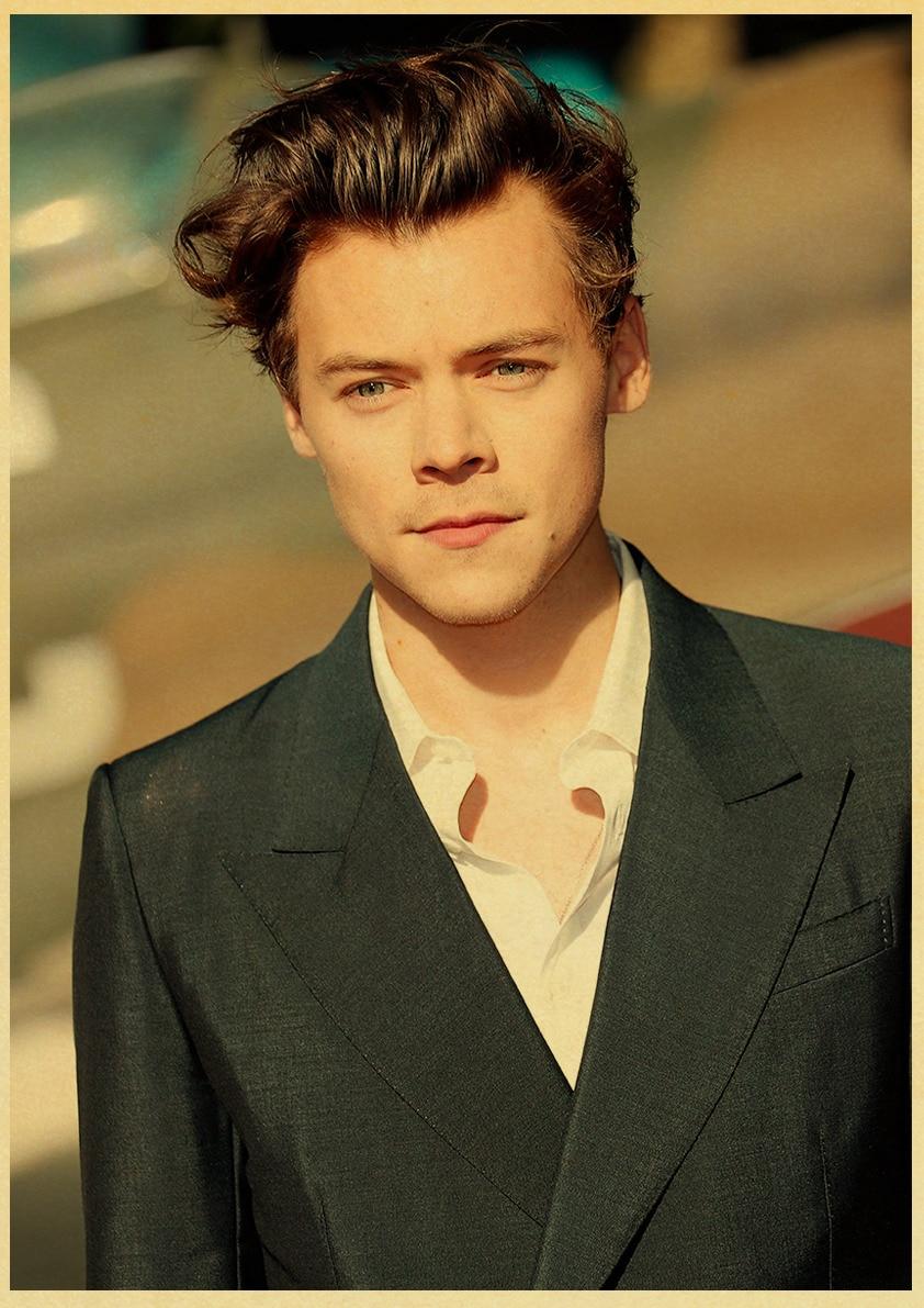 Top Harry Styles Hoodies