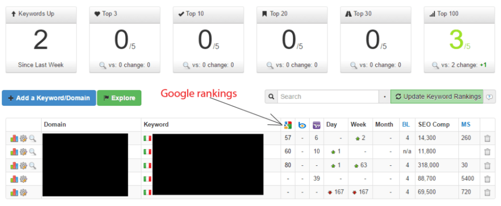 Foreign SEO Rankings