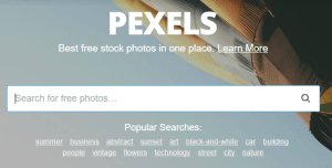 Pexels Free Stock Photography