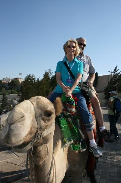 Camel, Sandra and Bob