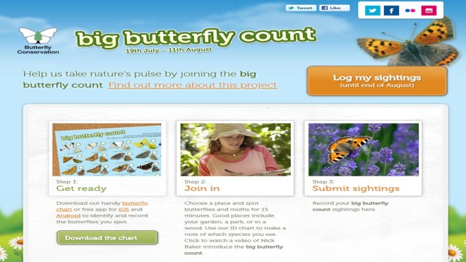 Hartington Nature Watch – Get involved in The Big Butterfly Count