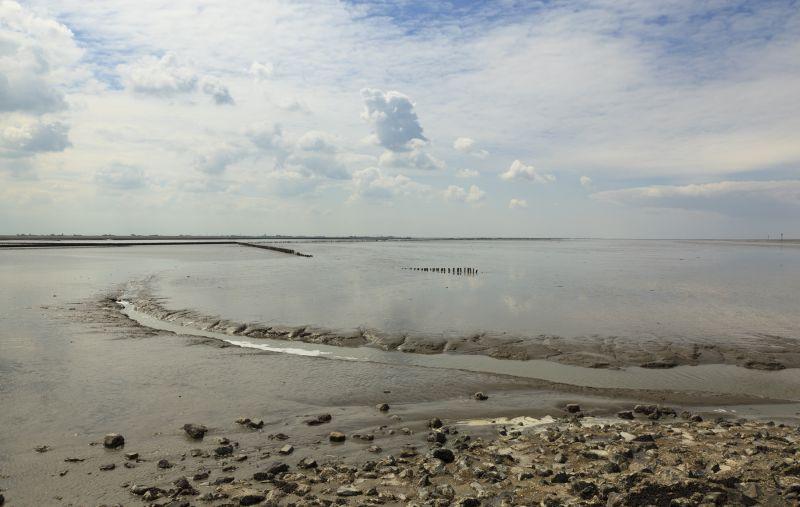 'De Waddenzee' -  Foto: Stichting Werelderfgoed