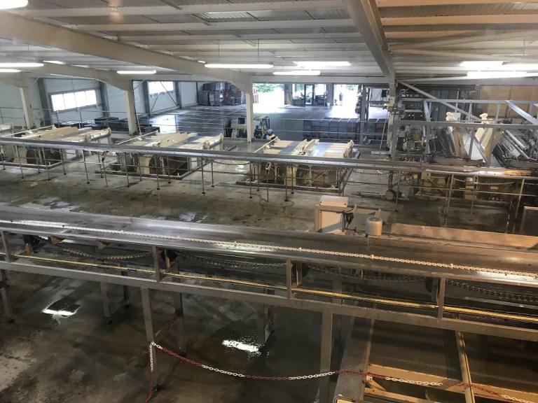 hoe wordt wijn gemaakt fabriek