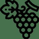Wijnproeverijen & wijncursussen Rotterdam