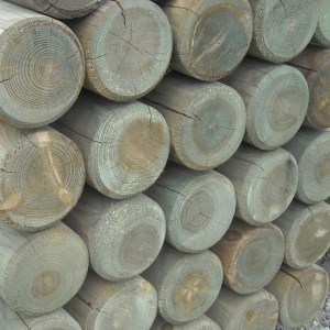 Round Timber