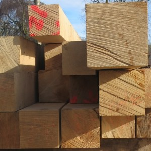 Oak sawn end