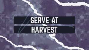 Serve At Harvest