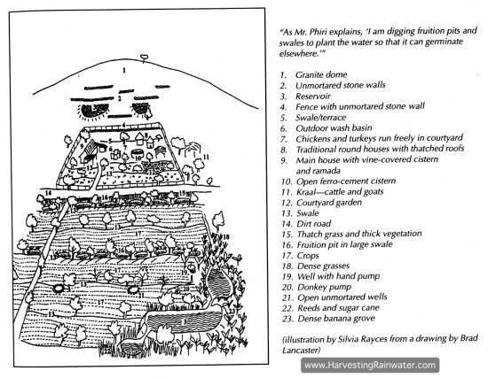 Figure 1. Map of the Phiri family farm, drawn in 1996.
