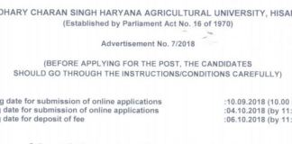 CCS Haryana Agriculture University Recruitment For Group-C Posts