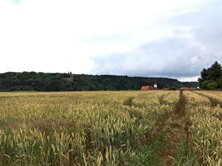 Bild: Blick auf Stadt und Schloss Mansfeld. Aufnahme aus dem Jahr 2009 von Birk Karsten Ecke.