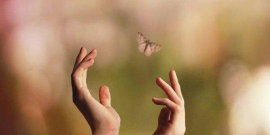 kelebek etkisi