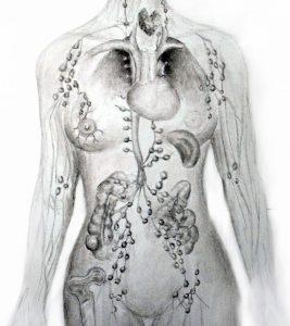 metal-body-closeup