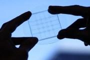 علماء يبتكرون مادة مرنة لصناعة شاشات قابلة للطي