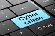تسجيل 4200 جريمة الكترونية في الأردن العام الحالي