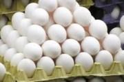 الحكومة تعفي زيت الزيتون وبيض المائدة والدجاج المجمد من زيادة ضريبة المبيعات