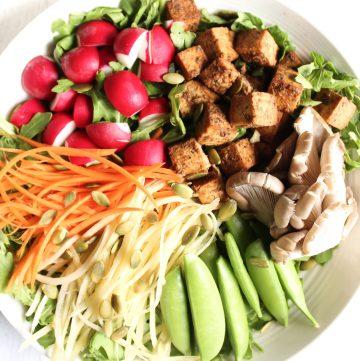 Hashtag Vegan | Balsamic Tofu Rainbow Salad