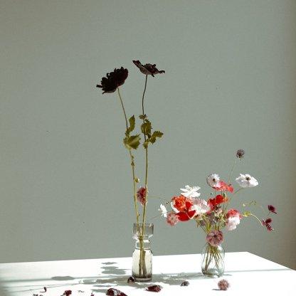 Pair of Seasonal Vase Arrangements | That Flower Shop