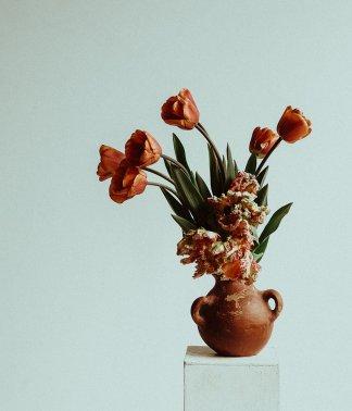 Natural Selection | That Flower Shop | Seasonal flowers, bouquets and arrangements