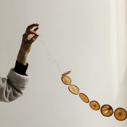 Sliced Orange Garland